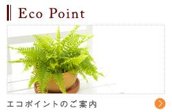 Eco Point